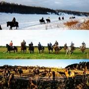 Конные прогулки ,  отдых в СеНаВиАн